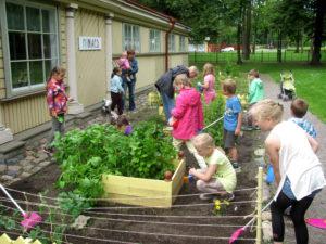 Kadrioru Lastemuuseum Miiamillla miniaias toimuvad Rohelised reeded