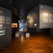 """Linnamuuseumi näitus """"Linnusest linnaks. Tallinna sünd 800 aastat tagasi"""""""