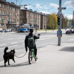 Tallinnapäev_Kitsekyla_MeeliKyttim (18)