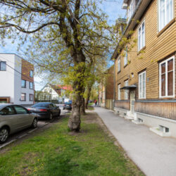 Tallinnapäev_Kitsekyla_MeeliKyttim (49)