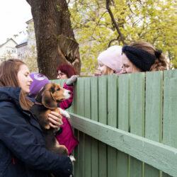 Tallinnapäev_Kitsekyla_MeeliKyttim (55)