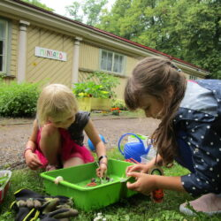 Vihmane roheline reede 20-07 (4)
